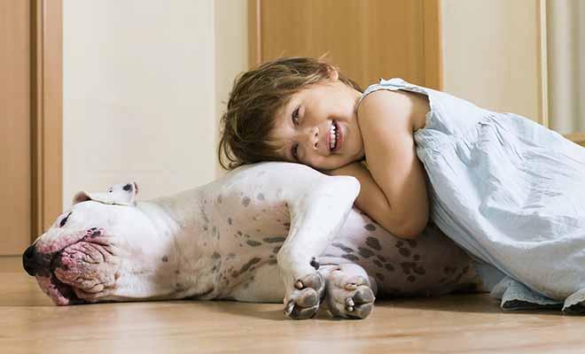 interaction enfant chien