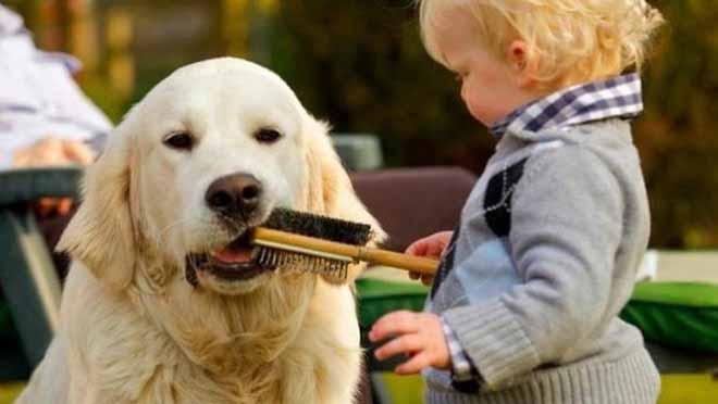 offrir un chien a son enfant