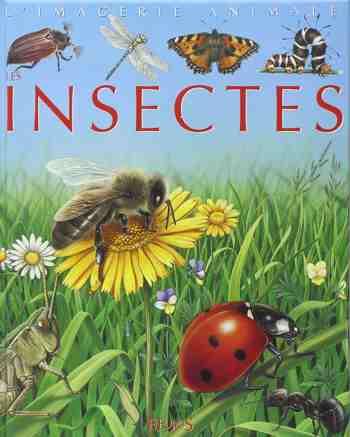 cadeau garcon 5 ans - Les Insectes - Pour les faire connaître aux enfants